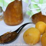 Marmellata di prugne gialle alla cannella
