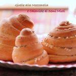 Girelle alla mozzarella e chioccioline ai semi misti