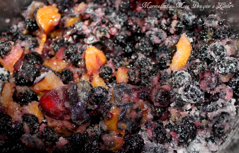 marmellata prugne rosse e more