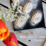 Madeleine al limone e zenzero